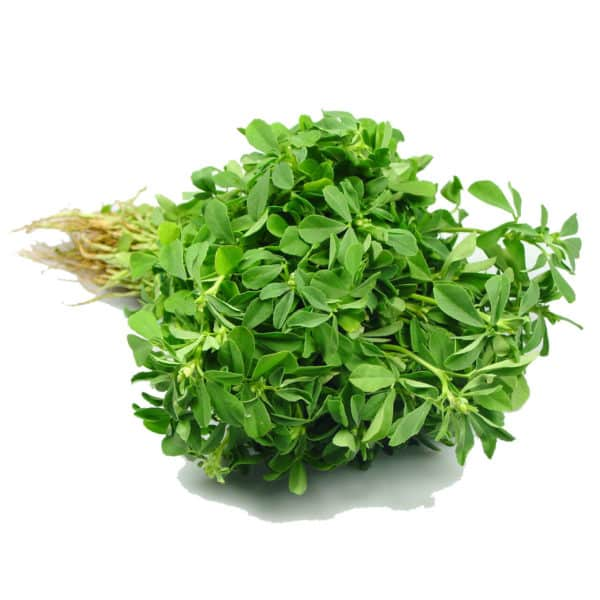 Fenugreek herb or Methi Leaves are basically in the form of seeds and works as an effective nutritional supplement. The herb has numerous health benefits!