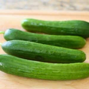 The cucumber is a creeping vine that roots in the ground. Grows up trellisesor other supporting frames wrapping around supports thin spiraling tendrils.